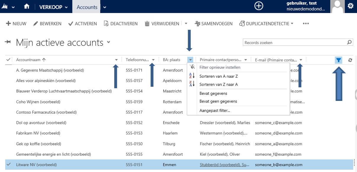 Filteren in weergaven de Dynamics 365/CRM software web cliënt